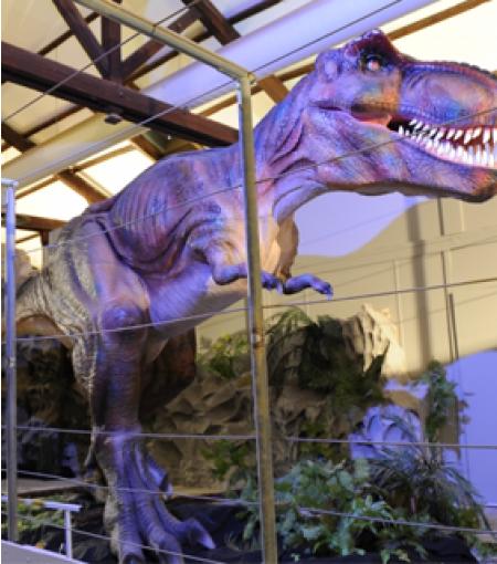 Dinosauria - Photo 2