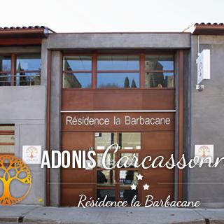 © Adonis Carcassonne - La Barbacane