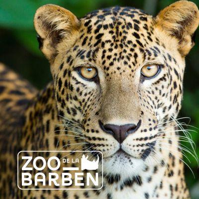 © Zoo de La Barben